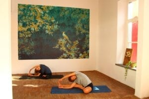 Neues Maitri Yoga Studio im Kreuzviertel an der Steinfurter Str. 9 - Yogastunden für alle Level